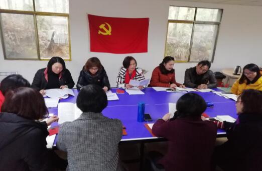 市妇联开展支部主题党日活动