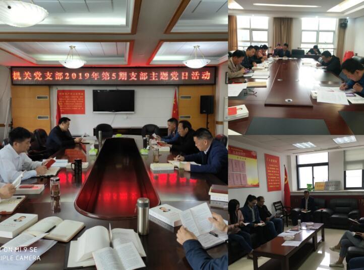 咸宁市自然资源和规划局开展2019年第5期支部主题党日活动
